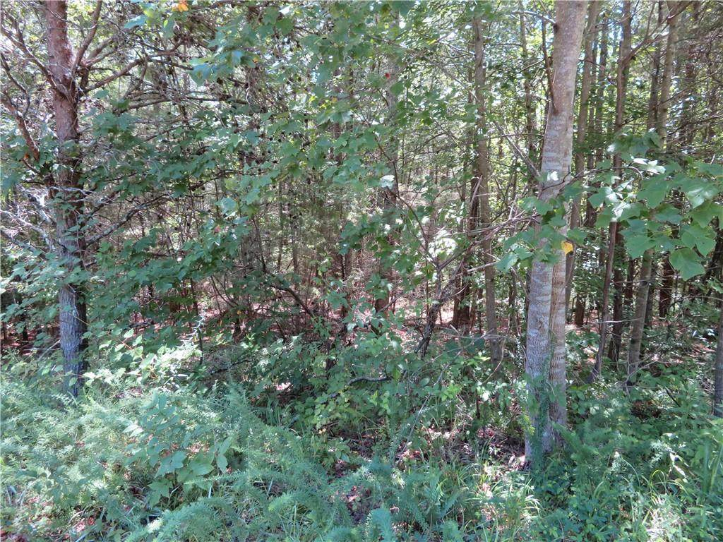 0 Wood Glen Trail - Photo 1