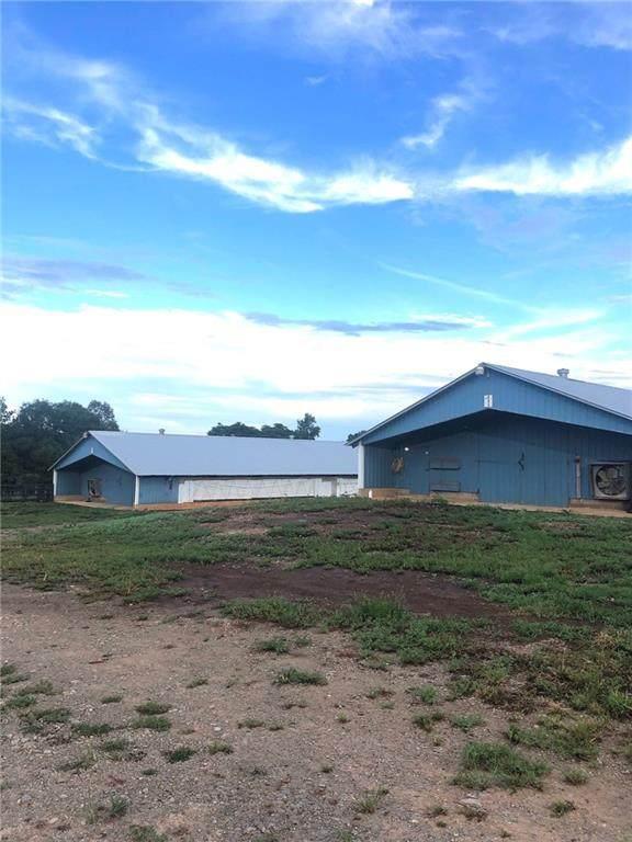1950 Brooke Lane, Bowman, GA 30624 (MLS #6769191) :: AlpharettaZen Expert Home Advisors