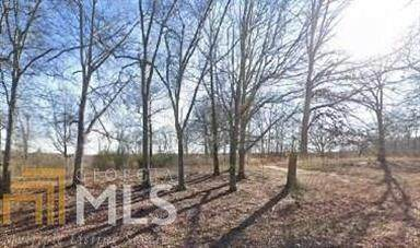 507 Thompson Mill Road, Braselton, GA 30517 (MLS #6776956) :: RE/MAX Paramount Properties