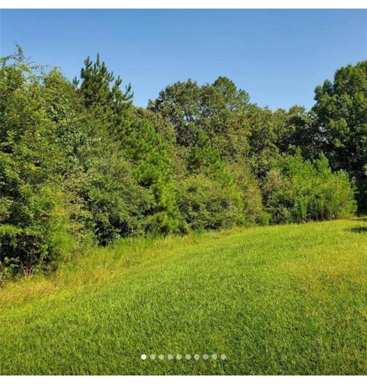 3300 Old Thompson Mill Rd Road - Photo 1