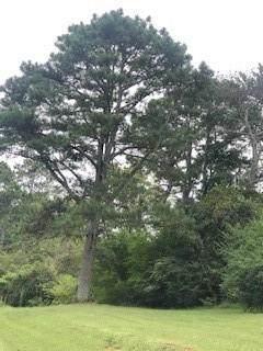 04 Doug Smith Road, Canton, GA 30114 (MLS #6785114) :: Good Living Real Estate