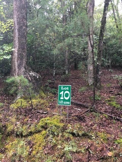 Lot 10 Hunter's Ridge, Morganton, GA 30560 (MLS #6787904) :: North Atlanta Home Team