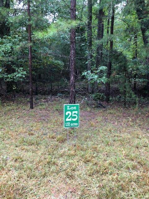 Lot 25 Hunter's Ridge, Morganton, GA 30560 (MLS #6787945) :: North Atlanta Home Team