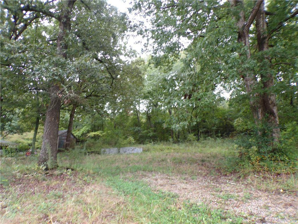 17 Old Alabama Road - Photo 1