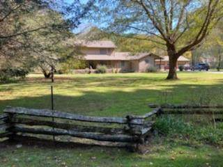 1908 Riverside Drive, Hiawassee, GA 30546 (MLS #6798574) :: AlpharettaZen Expert Home Advisors