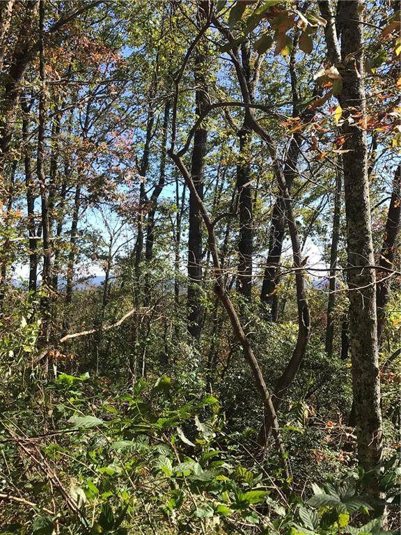 Lot 8 Huntington Place, Dahlonega, GA 30533 (MLS #6803688) :: North Atlanta Home Team