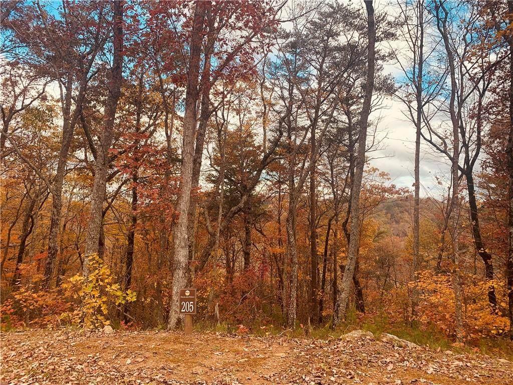 Lt 205 Stone Cliff Drive - Photo 1
