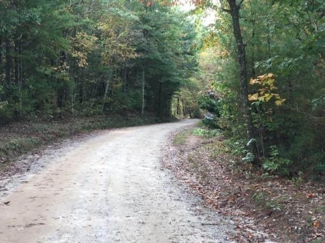 680 Tame Turkey Road - Photo 1
