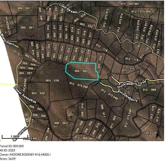 005003 Huckleberry Cove, Jasper, GA 30143 (MLS #6808167) :: North Atlanta Home Team