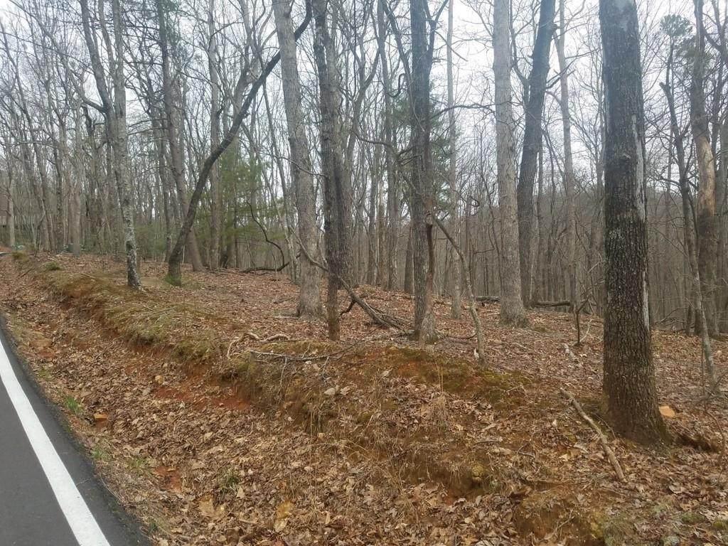 1041 Woodland Trace - Photo 1