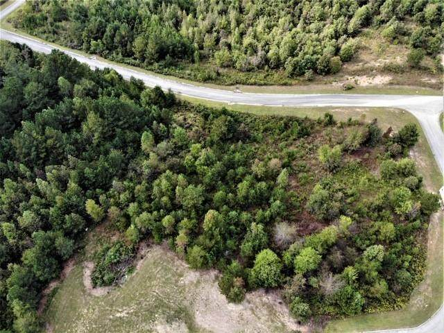 Lot 21 Stonegate Place, Cohutta, GA 30710 (MLS #6812328) :: North Atlanta Home Team