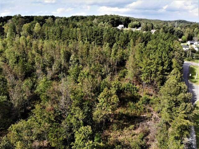 Lot 29 Stonegate Place, Cohutta, GA 30710 (MLS #6812333) :: North Atlanta Home Team