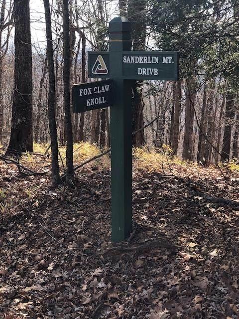 453 Sanderlin Mountain Drive - Photo 1