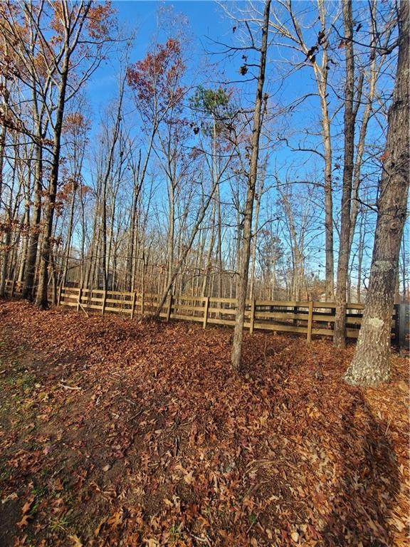 436 Lula Payne Trail, Ball Ground, GA 30107 (MLS #6822890) :: Thomas Ramon Realty