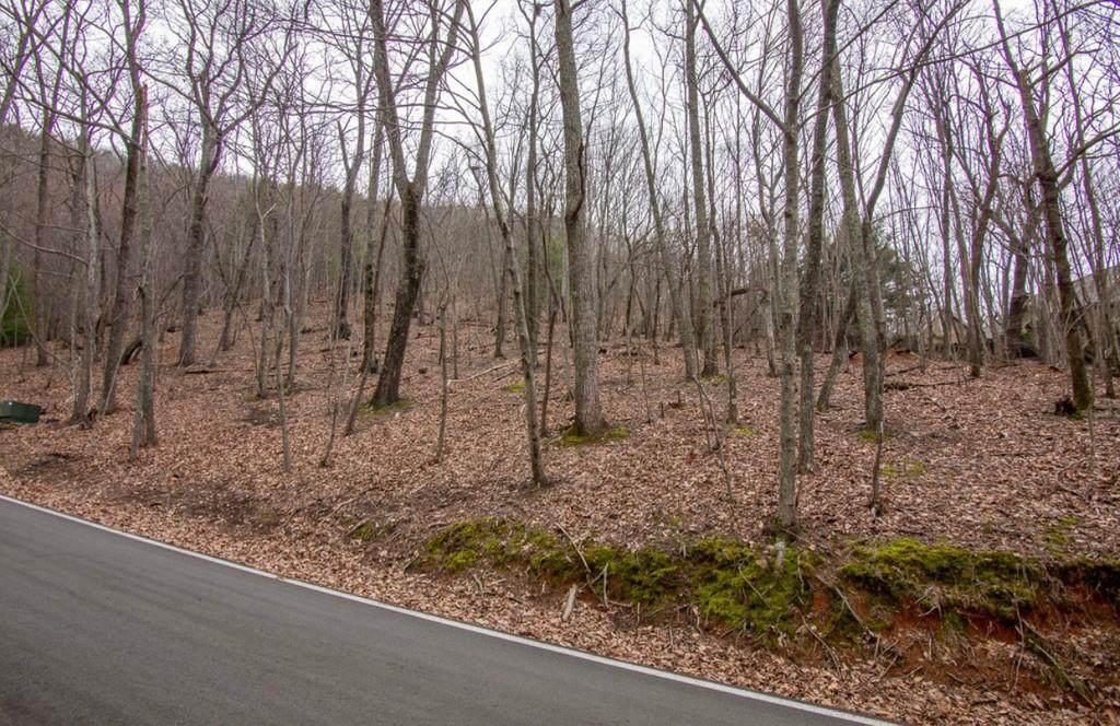 1127 Woodland Trace - Photo 1