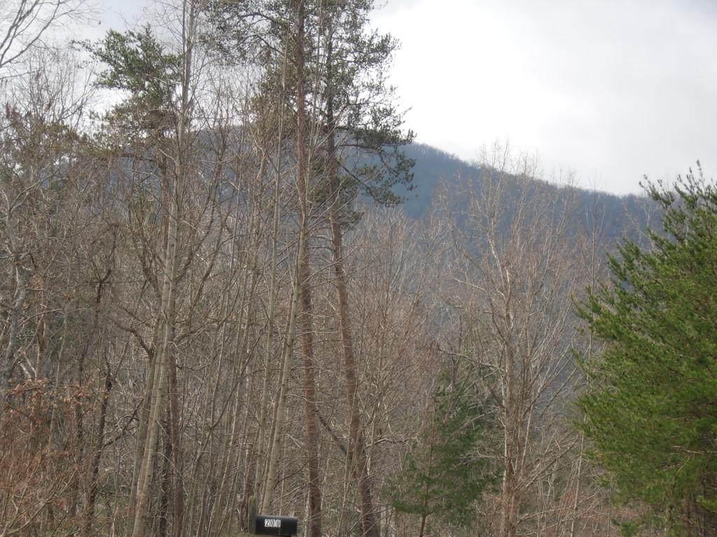 0. Tall Oak Drive - Photo 1