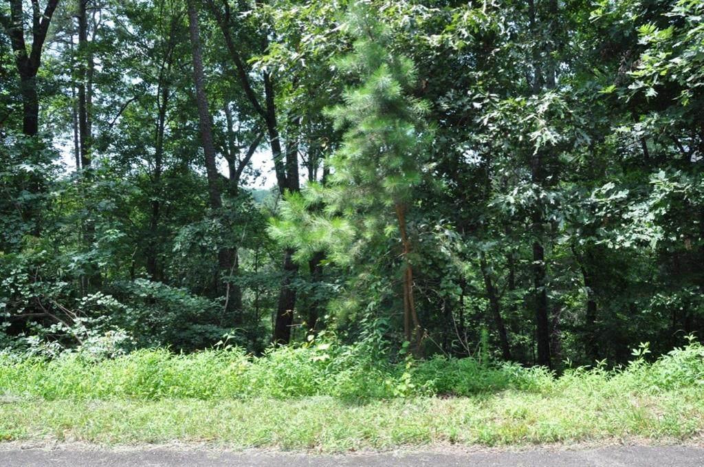 870 Nashoba Trail - Photo 1