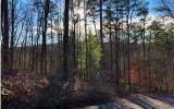 1684 Shade Tree Drive - Photo 2