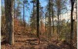 1684 Shade Tree Drive - Photo 3