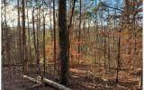 1684 Shade Tree Drive - Photo 5