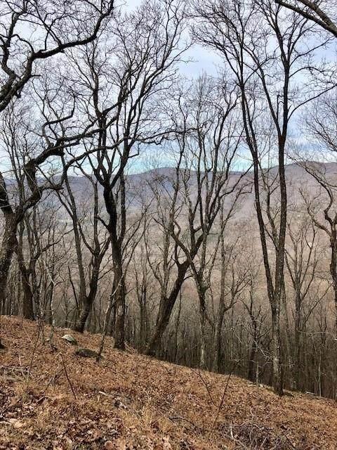 0 High Trail Vista Circle - Photo 1