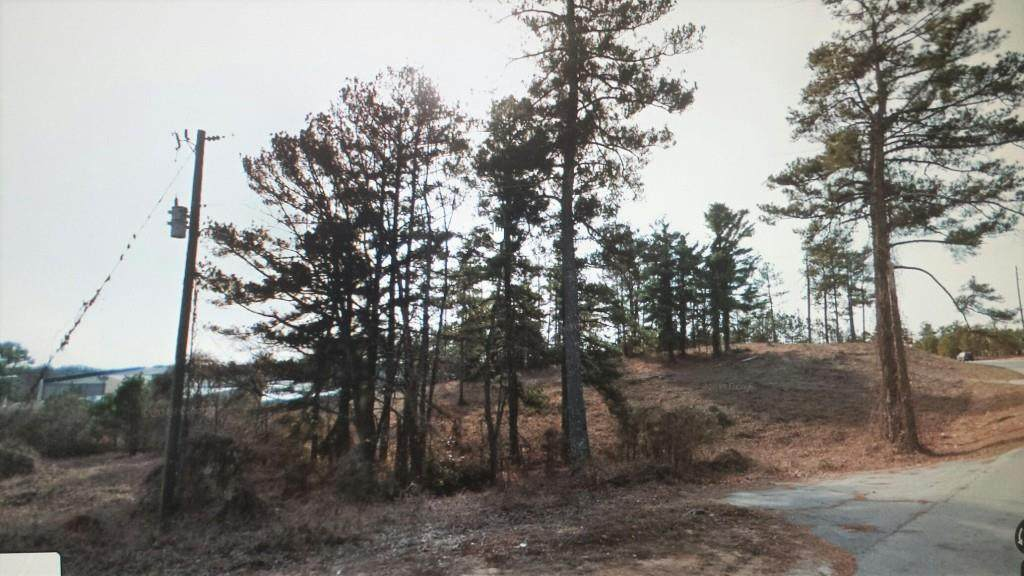 686 Old Snellville Highway - Photo 1