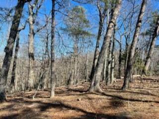 112 Wood Fern Knoll, Big Canoe, GA 30143 (MLS #6836411) :: North Atlanta Home Team