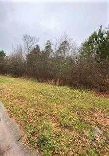 131 Ivy Creek Drive, Bogart, GA 30622 (MLS #6838853) :: North Atlanta Home Team
