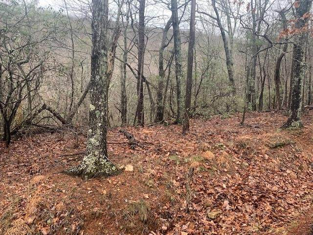 00 Oglethorpe Mtn Rd - Photo 1