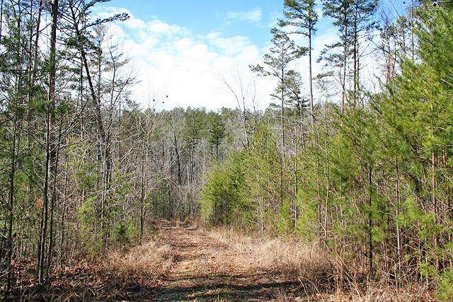 0 Whitepath Road, Ellijay, GA 30540 (MLS #6842108) :: City Lights Team | Compass