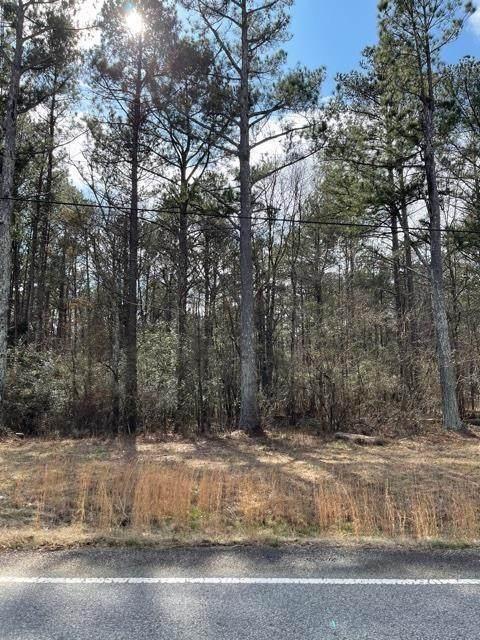 00 Turkey Creek Road, Newnan, GA 30263 (MLS #6842827) :: 515 Life Real Estate Company