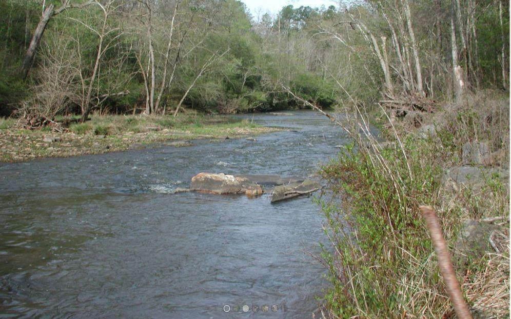 Lot 2 Waters Edge Creek - Photo 1