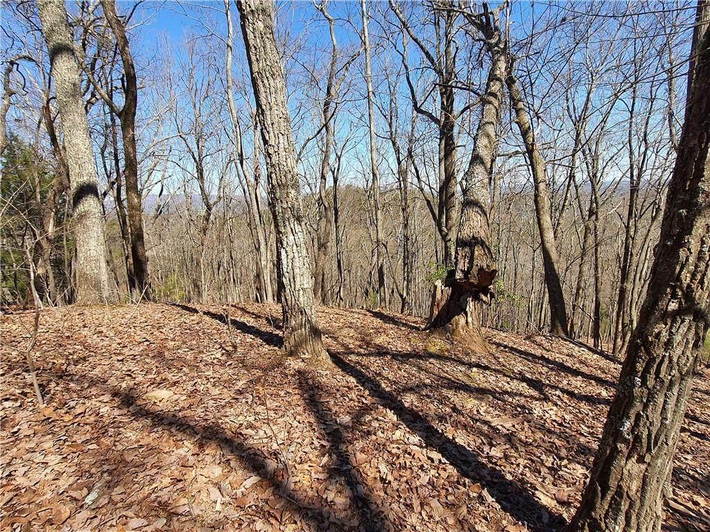 132 Black Bear Ridge - Photo 1