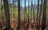 1026 Raccoon Ridge - Photo 2