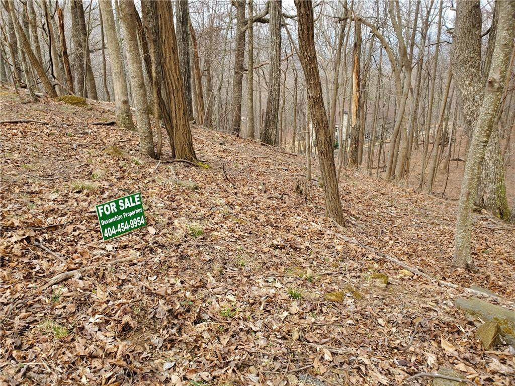 0 Little Pine Mountain Road - Photo 1