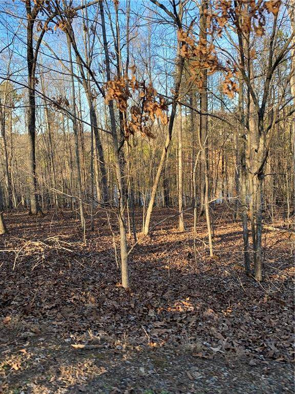 00 Walnut Ridge Lot 20 Terrace, Ellijay, GA 30540 (MLS #6855264) :: Rock River Realty