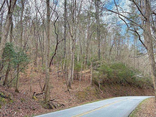 0 Clay Creek Falls (21+/- Ac) Road - Photo 1