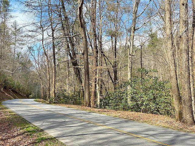 0 Clay Creek Falls (38+/- Ac) Road - Photo 1