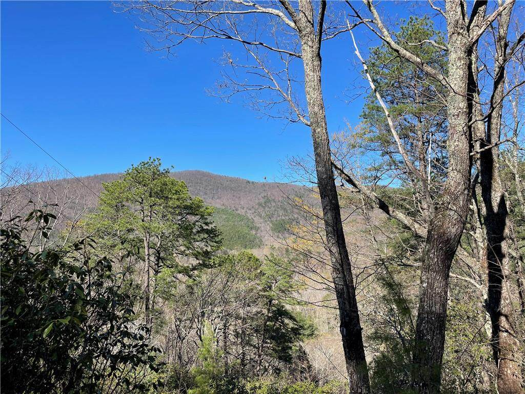 0 Oakey Mountain Road - Photo 1