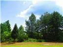4736 Cardinal Ridge Way - Photo 2
