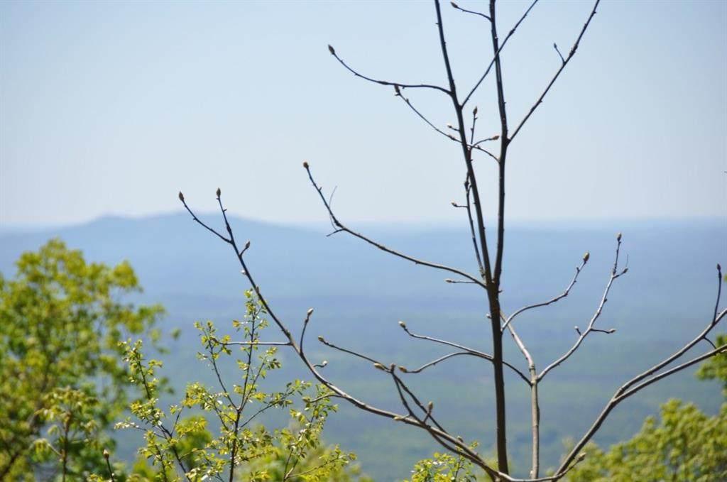 5056 Sanderlin Mountain Drive - Photo 1