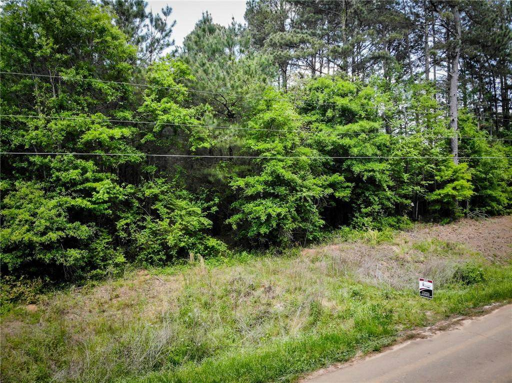 2200 Emmett Doster Rd Tract #2 - Photo 1