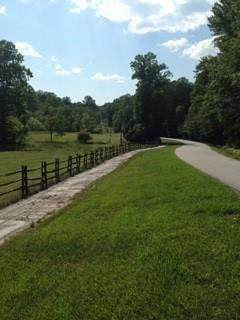 J15 Blue Ridge Dr, Sautee Nacoochee, GA 30571 (MLS #6872349) :: North Atlanta Home Team
