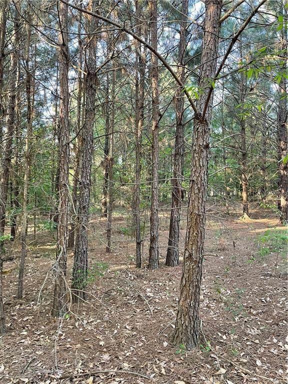 5387 Wapakonata Trail - Photo 1