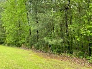 0 Reed Creek 2 Tract - Photo 1