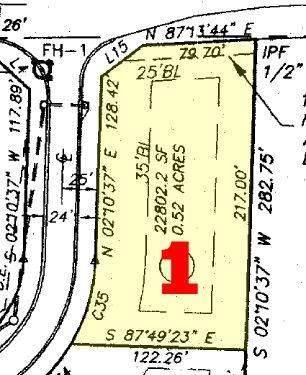 1 Shawnee Trail, Dallas, GA 30157 (MLS #6876873) :: Thomas Ramon Realty