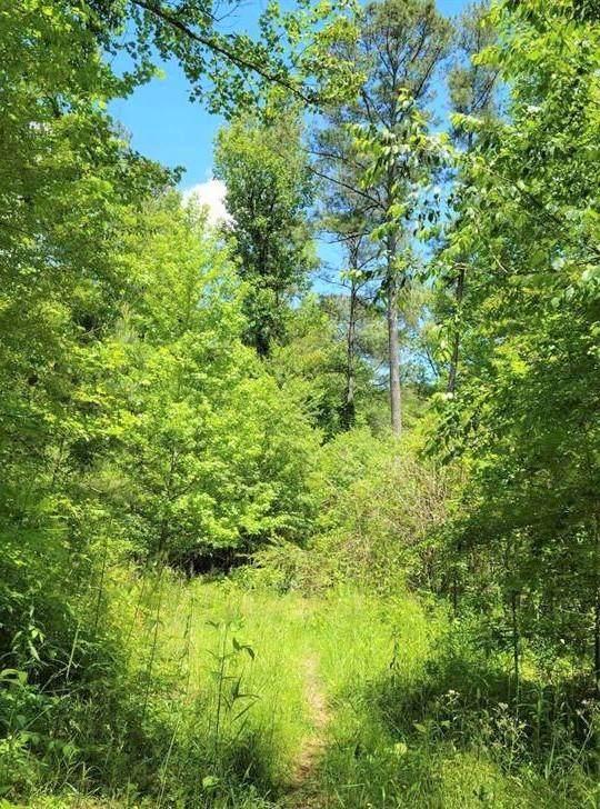 676 Flowery Branch Road, Kingston, GA 30145 (MLS #6884453) :: The Heyl Group at Keller Williams