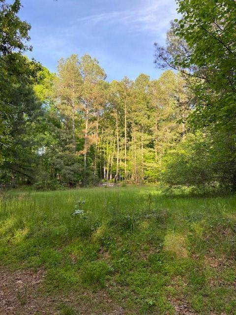 00 Hogan Pond Lane Land - Photo 1