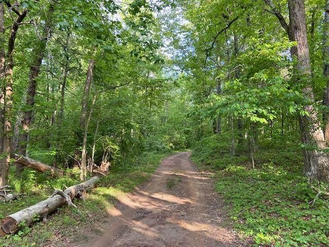 000 Hogan Pond Lane - Photo 1