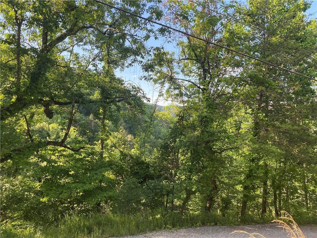 626 Ocelot Trail - Photo 1